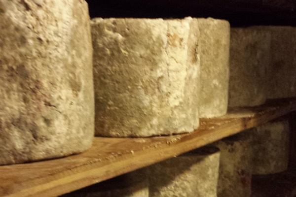 Housemade cheese aging to perfection.